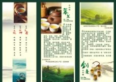 绿茶宣传页图片