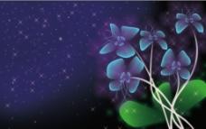 繁星夜空奇丽花朵