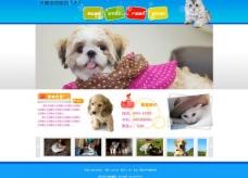宠物医院网站模板图片