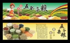 五谷雜糧圖片
