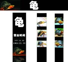 龟招牌图片