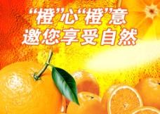 超市橙子宣傳創意展板圖片