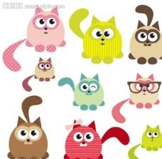 小猫猫咪宠物CAT图片