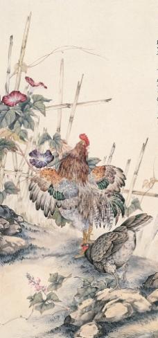 家禽工笔画图片